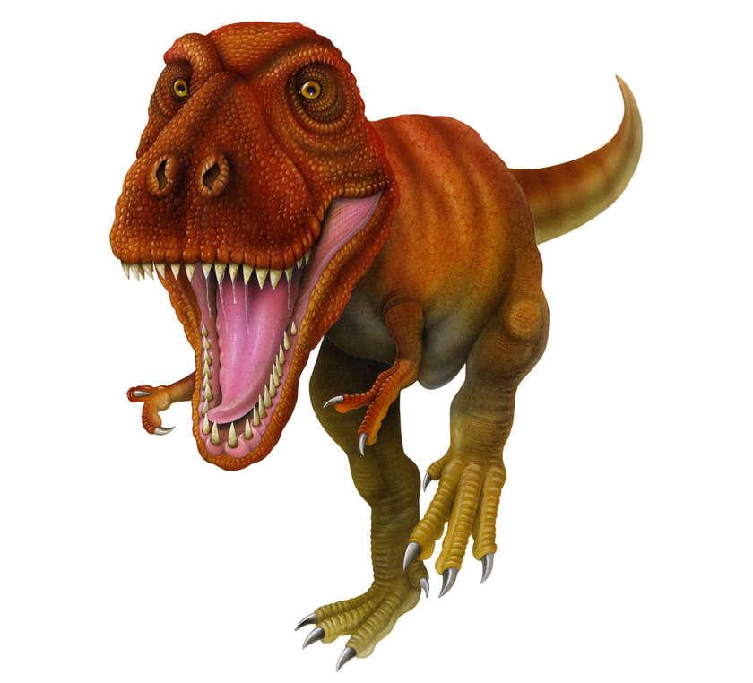 T_rex01_copia