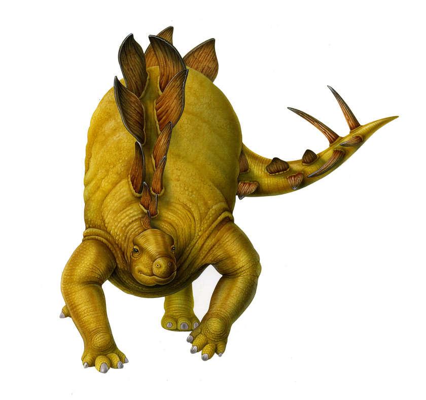 Stegosauro_copia