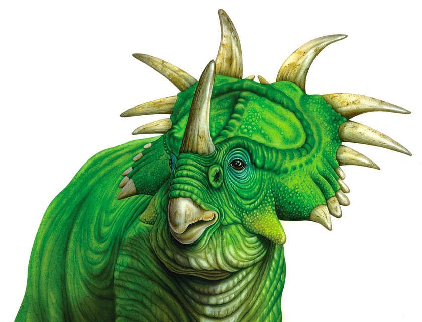 Dinosauro_copia