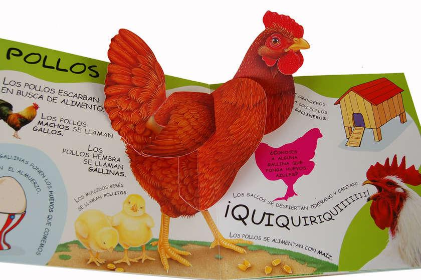 Dsc_0377_chicken