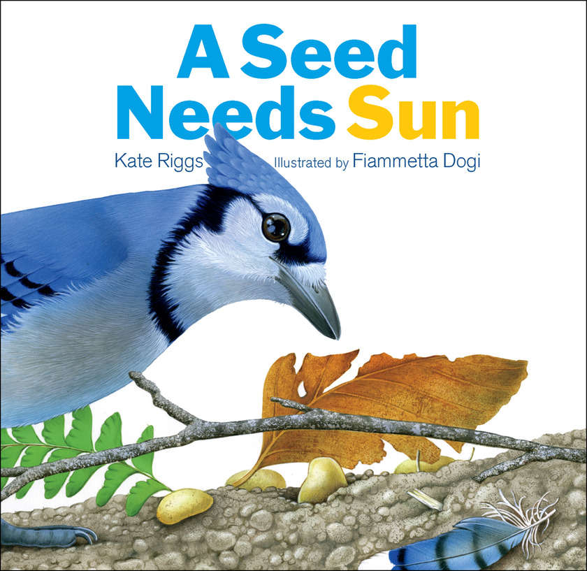 A_seed_needs_sun_cover_