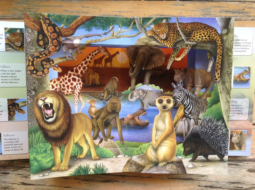 3d_wild_animals_2_fiammetta_dogi_02