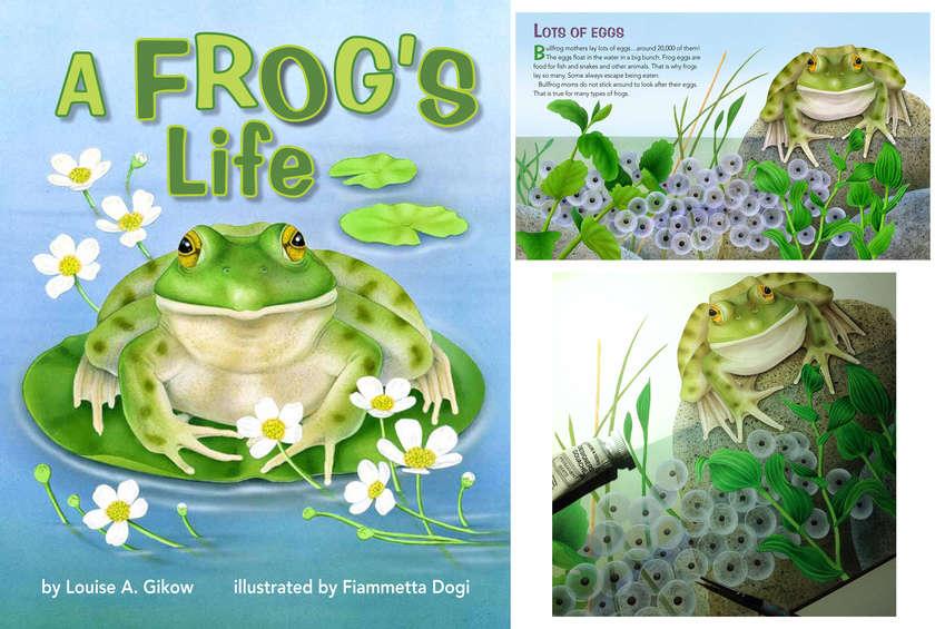 Fiammetta_dogi_frogs_life
